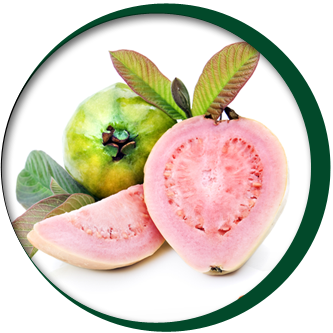 Guava Pulp - White and Pink
