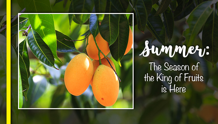 Summer: The Season of the King is Here